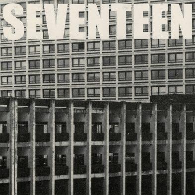 Seventeen Going Under