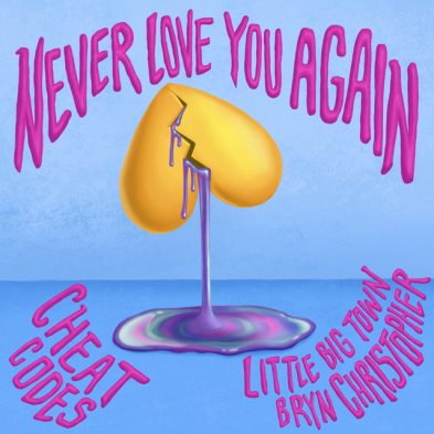 Never Love You Again